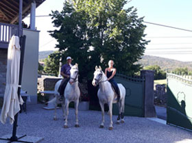 Stay at Lipizzaner Lodge in Lipica