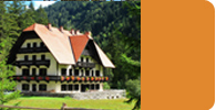 Click here to view hundreds of accommodation options in Slovenia and Europe as well