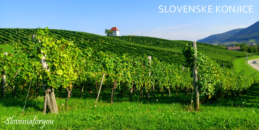 Book a transfer in Slovenia today!