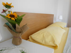 Stay at Istrian Rooms - Slovenian Istra