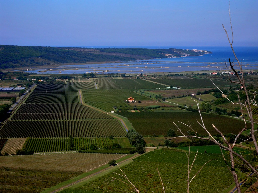 Sweeping views at dusk from the vines to the sea!