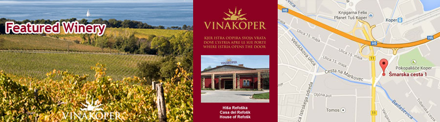 VinaKoper - One of Slovenia's largest producers of quality wines